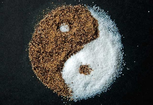 salt_and_pepper_yin_yang_by_rollingfishays-d4qtw24-620x424