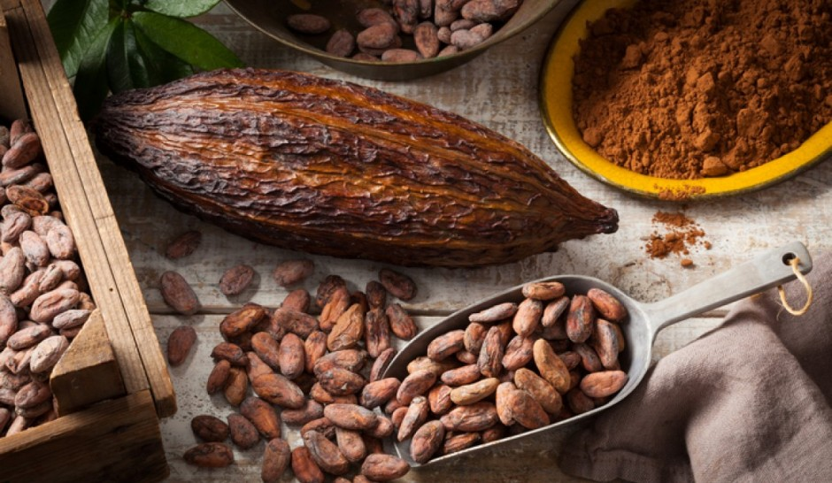 article-beneficios-cacao-natural-5ad9bcb3e3852